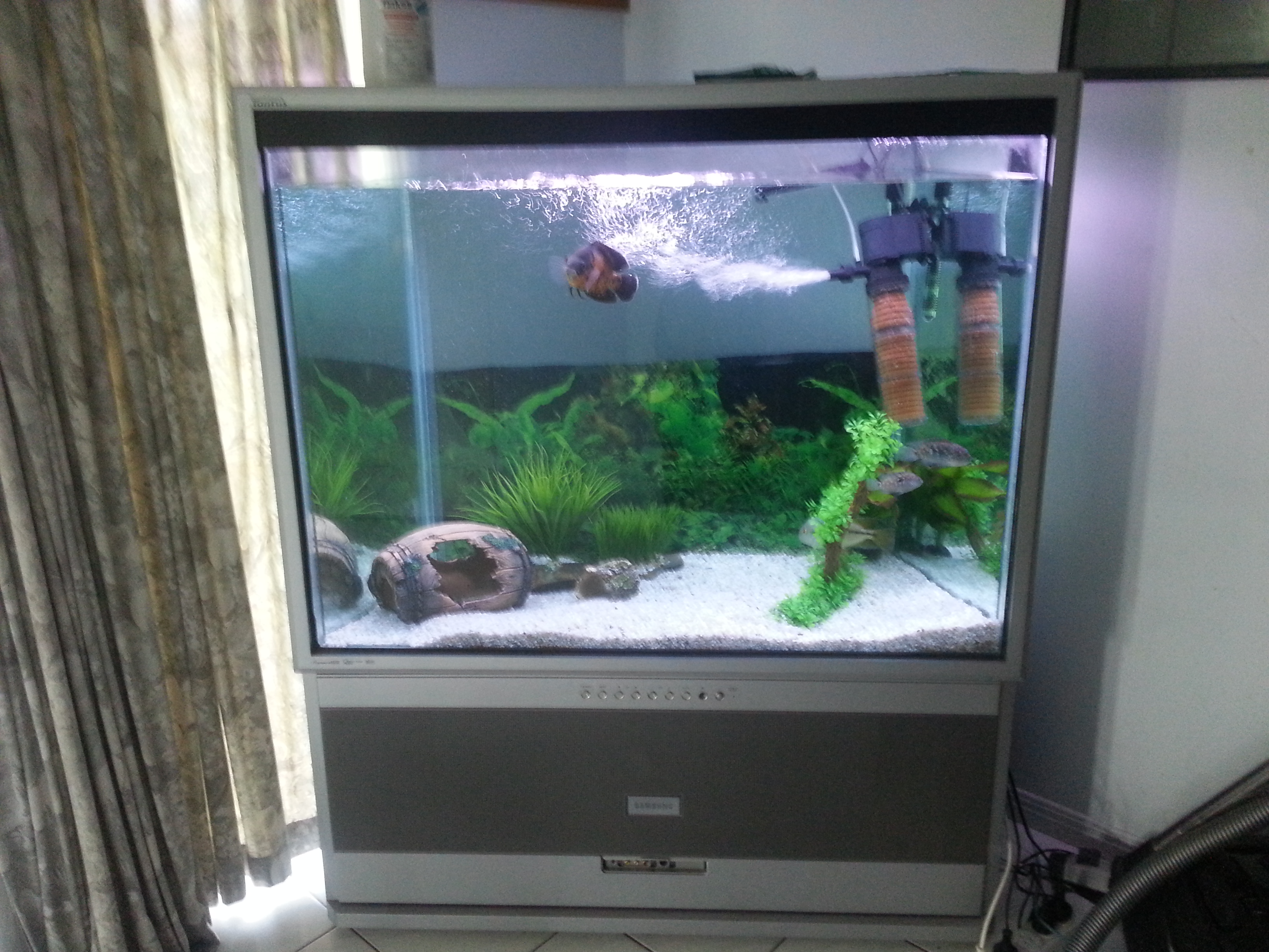 Boost classifieds buy sell used cars bikes boats for Unique fish tanks for sale